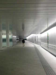 隠された地下道を公開